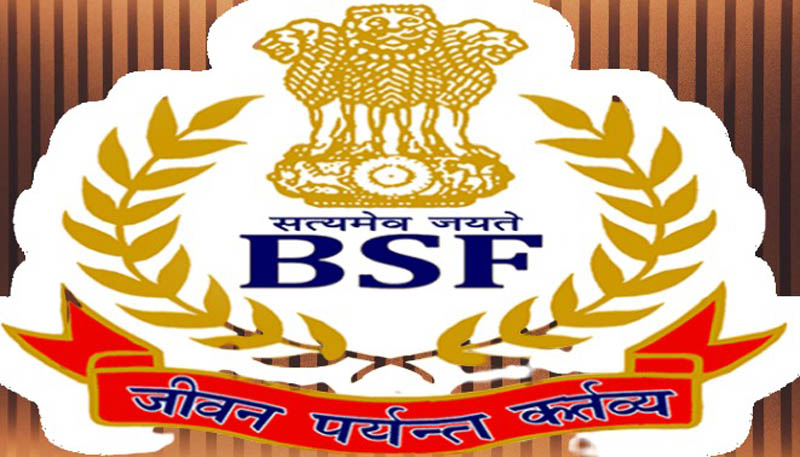 BSF Recruitment 2020   Apply for Various Post